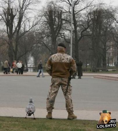 Видео: Как вести себя с милицией?